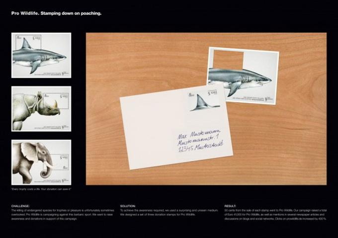 Pro-Wildlife-Campaign-640x452