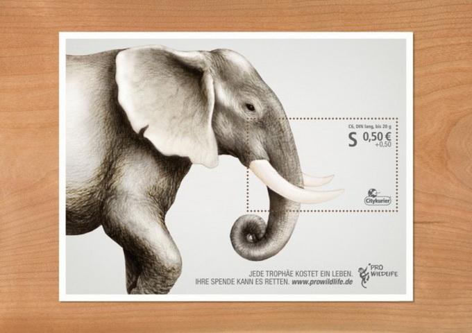 Pro-Wildlife-Campaign-640x453