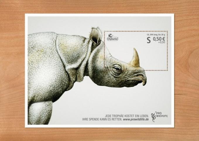 Pro-Wildlife-Campaign-640x454